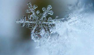 winter-th